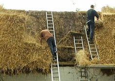 How to Build a Thatched Roof