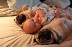 Cute babies.