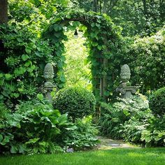 Through the garden gate in Bedford, New York. There's something very calming about shades of green. #garden #gardeninspiration #gardengate #boxwood #dailybloomgarden #greengarden
