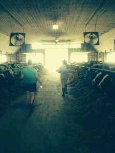 This week's Food Feed blog post takes us behind the scenes to see The Invisible Hands of VT's Dairy Industry
