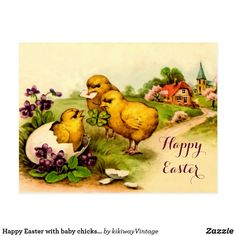 Happy Easter with baby chicks and pansies Postcard