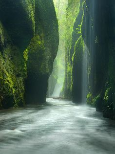"""RAINFOREST CANYON""  ::    Oneonta Gorge, Oregon  ::  by Photographer Marc Adamus"
