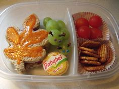 Bento box lunch for my kids
