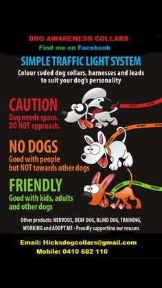 Dog Awareness Collars - find me on Facebook - Dog products