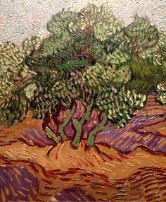 Vincent Van Gogh Olive Trees (detail), 1889