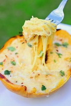 Spaghetti Squash Alfredo Recipe - Tenacity Solution