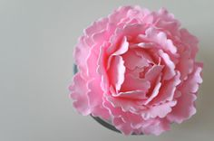 The Baking Pixie: Sugar Peony