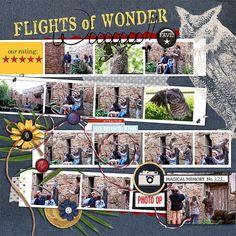 Disney Scrapbook Page Layout - Disney's Animal Kingdom Flights of Wonder