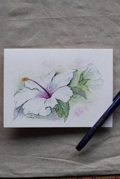 White Hibiscus watercolor painted card-Original or print