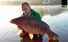Carp Fishing, Mai, Wild Ones