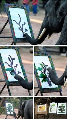 5 Amazing photos Showing How an Elephant is Painting! 3 Thats Simply Amazing!