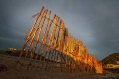 FACEBOOK 22 Aug. Imagician (photo). Erica Lüttich (artist), 'Running Fences' 2013. Site_Specific #LandArtBiennale. #LandArt #Plett