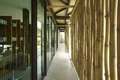 El pabellón de bambú