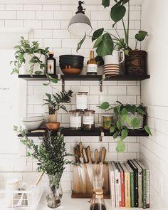 Home Decor Living Room .Home Decor Living Room Kitchen Shelves, Kitchen Decor, Open Shelves, Kitchen Ideas, Kitchen Plants, Kitchen Corner, Kitchen Recipes, Kitchen Storage, Küchen Design