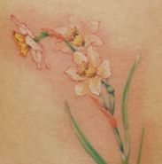 Daffodil tattoo                                                                                                                                                     More