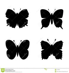 http://www.dreamstime.com/stock-illustration-butterfly-silhouettes-design-vector-illustration-image41235851