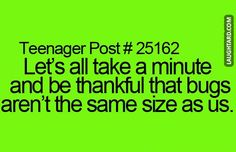 Lets all take a minute and be thankful  #funny #haha #lol #laughtard #funnypics #thankful #bugs