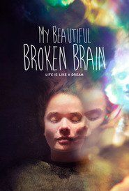 My Beautiful Broken Brain: A profoundly personal voyage into the complexity, fragility and wonder of the human brain, after Lotje Sodderland miraculously survives a hemorrhagic stroke and finds herself starting again in an alien world, bereft of language and logic.....