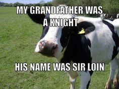 Knight his name was sir loin, cow, pun