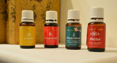 I want to try this with my husband! Double Duty: Essential Oils for Weight Loss or Reflux/Heartburn