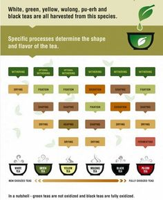 """Tea: It's all a matter of processing. """"In a nutshell, Green tea is not oxidized, and Black tea is fully oxidized."""" Here is more detail: http://en.wikipedia.org/wiki/Tea"""
