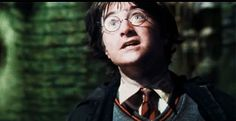 I got You're a survivor!! Can We Guess If You'd Survive The Chamber Of Secrets?