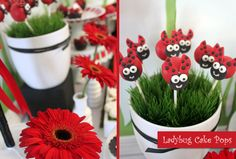 Blog - Featured Ladybug Themed Birthday Party Party Supplies and Decorations at Discount Prices. PartyStock is your Canadian source for party ideas, party supplies, and decorations!