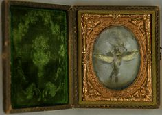 "Collected by Neville Colmore - ""Green Fairy Specimen"" 1890's."