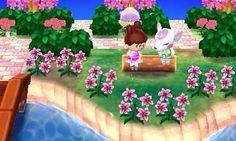 flower                                                                                                                                                                                 More