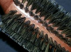 Styling brushes thick bristles wood handles cushioned natural Professional Hair