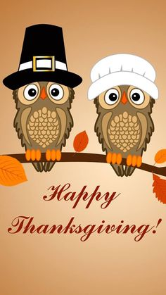 Happy Owl Thanksgiving