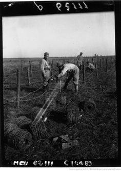 WWI, 1916, Installation of barbed wire by French soldiers. [photographie de presse] / Agence Meurisse