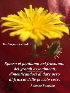 http://www.ilgiardinodeilibri.it/libri/__vivere_bene_qui_ora.php?pn=4319