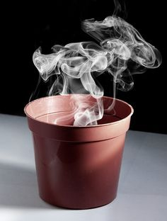 Smoking Pot...Love this pun! - mad credit goes to dori the giant.