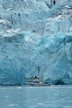 corp1995 - Glacier Bay, Alaska (by NOAA)