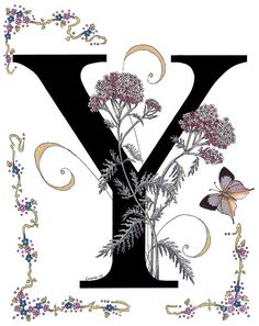 Art by Costance (Stanza) Widen From The Butterfly and Flowers Alphabet Series 'Morning Glory and Monarch Butterfly' Stencil Lettering, Font Art, Hand Lettering, Illuminated Letters, Illuminated Manuscript, Schrift Design, Stoff Design, Butterfly Painting, Monarch Butterfly