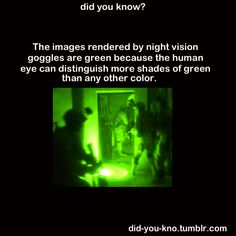 The images rendered by night vision goggles are green because the human eye can distinguish more shades of green than any other color.