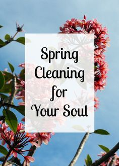Spring is a time for lightness, brightness, and freshness, not just for our homes, but for our souls. Some spring cleaning practices to clear the cobwebs out of your heart.   TheNestedNomad.com