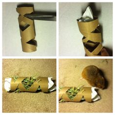 How to make a easy hamster toy You will need: A toilet/paper towel tube Timothy hay Scissors Paper towel  Start by cutting holes in the toilet paper tube. Next, stuff one end with paper towel. Then, stuff Timothy hay in it. Finally, on the other end stuff paper towel in it. Great for all hamsters