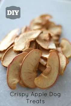 DIY Crispy Apple Dog Treats Here's another easy, inexpensive, and delicious dog treat idea for you! This one is prepared using the same method as the sweet potato treats I showed you a few weeks ago. For the record, I a… Puppy Treats, Diy Dog Treats, Healthy Dog Treats, Homeade Dog Treats, Homemade Dog Cookies, Homemade Dog Food, Cookies For Dogs, Dog Biscuit Recipes, Dog Food Recipes