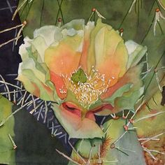 Cactus flower,  cactus, desert, Prickly Pear Cactus, Green, Orange, White,WATERCOLOR PAINTING, southwest , giclee 8 x 8 via Etsy