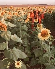 Good Morning Kiss Images, Good Morning Kisses, Plants, Blog, Sunflower Fields, Road Maps, Cities, Autumn, Winter Time