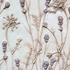 Queen Anne's Lace lavender plaster cast botanical art