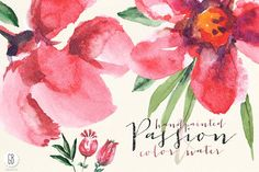 Aquarelle watercolor red flowers by GrafikBoutique on @creativemarket