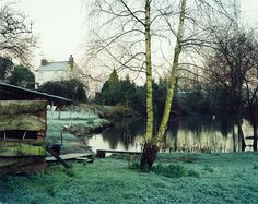 Jem Southam, The Pond at Upton Pyne, 2001.