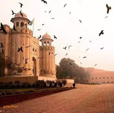 Fantastic view of birds flying in historical Lahore fort Punjab Pakistan