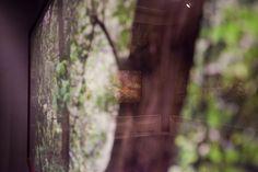 Promoción del Arte: Tiergarten. Paisaje Romántico - Museo del Romanticismo © Ministerio de Educación, Cultura y Deporte / David Serrano