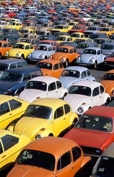 1973 VW Beetle