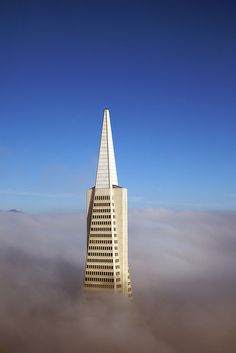 Does the Transamerica building remind you of a certain city in the clouds? I think I can see Lando Calrissian from Star Wars! Now that is a great looking building...