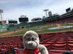 2017 Fenway Ball Park tour